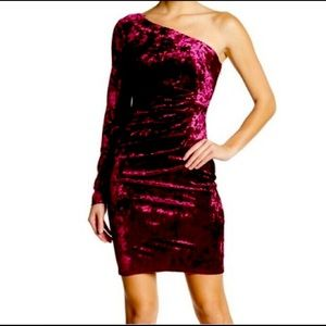 NWT ElizaJ Wine Velvet One Shoulder Cocktail Dress